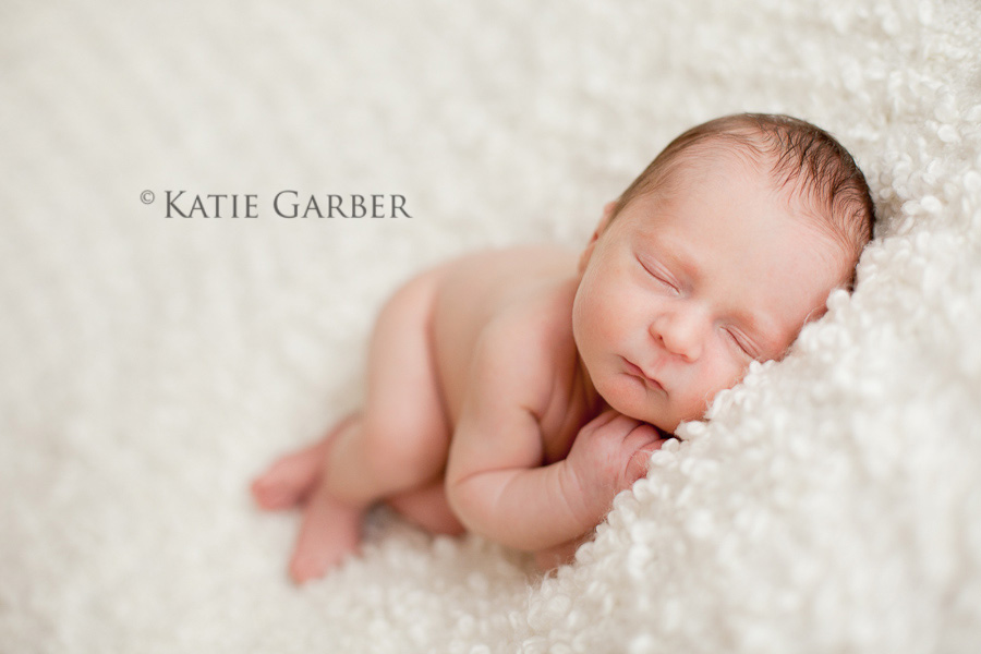 How To Take Newborn Portraits