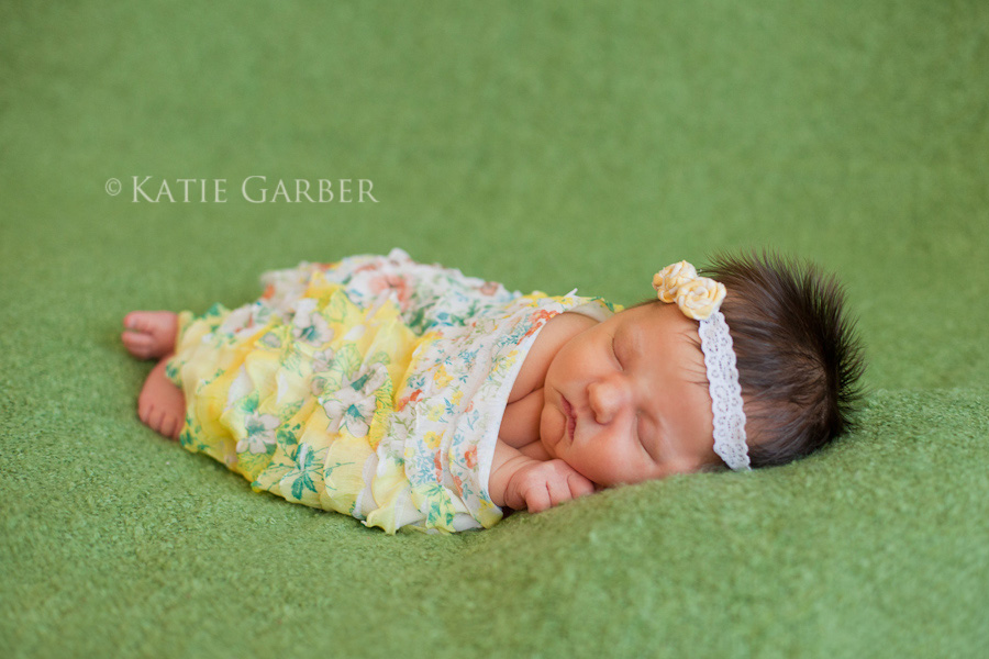 flowers ruffle wrap newborn portrait