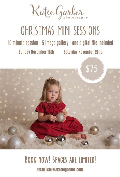 Christmas Mini Sessions Montoursville Baby Child Photographer