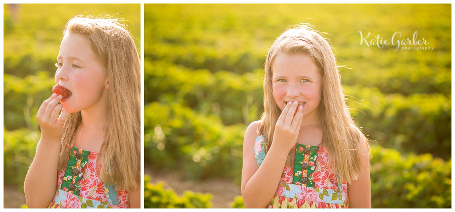 strawberry photo session