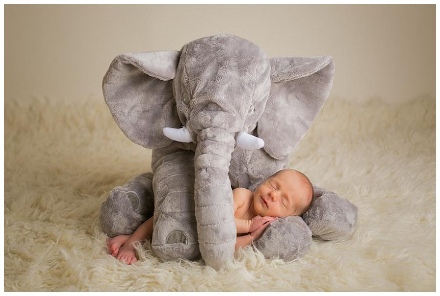 Katie Garber Photography – Williamsport Montoursville PA newborn photographer – baby and elephant portrait - Grant 11-18