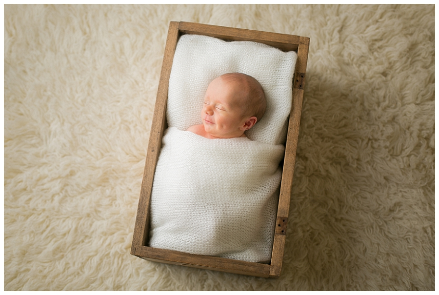 Katie Garber Photography – Williamsport newborn photographer – flokati prop from above - Grant 11-18